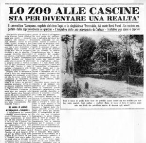 La Nazione 18 aprile 1959 La prima notizia su Canapone
